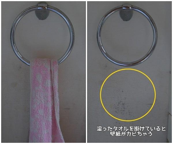 カビが生えやすい場所 洗面所のタオル掛けの裏